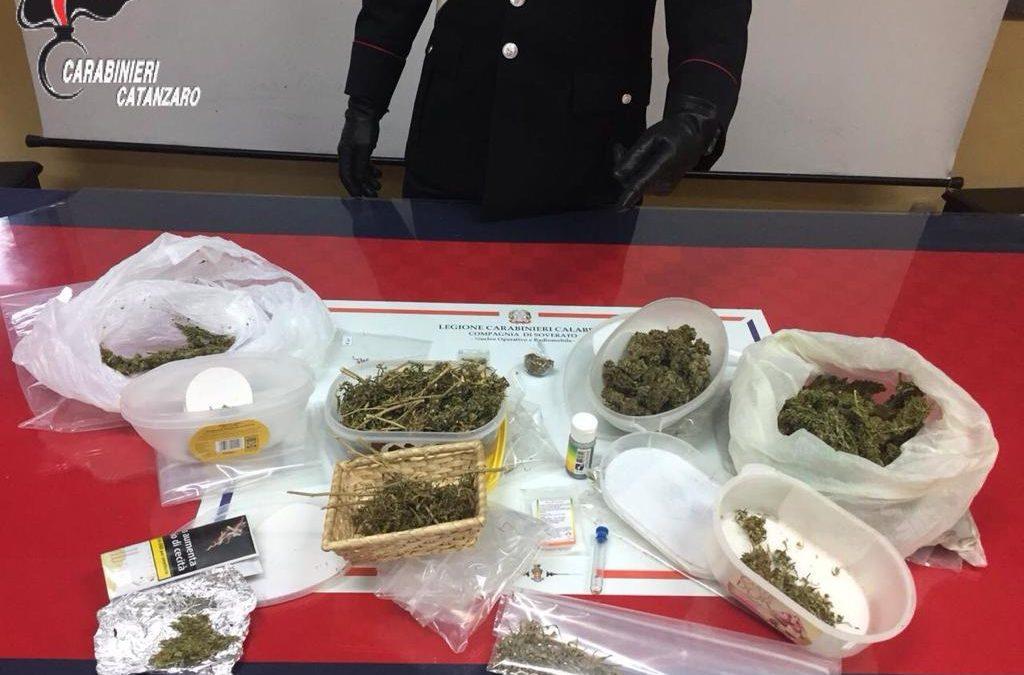 La marijuana nascosta persino nel frigorifero  Arrestato nel Catanzarese dopo una perquisizione