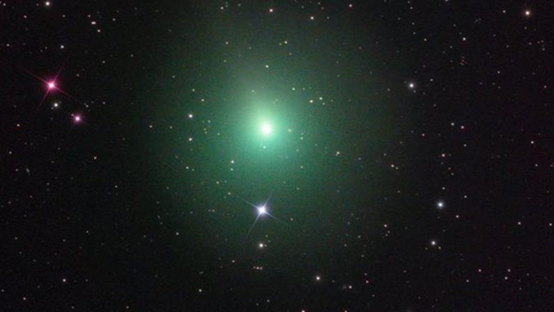 Tutti con il naso all'insù ad osservare la cometaIniziativa nel Cosentino per l'evento cosmico