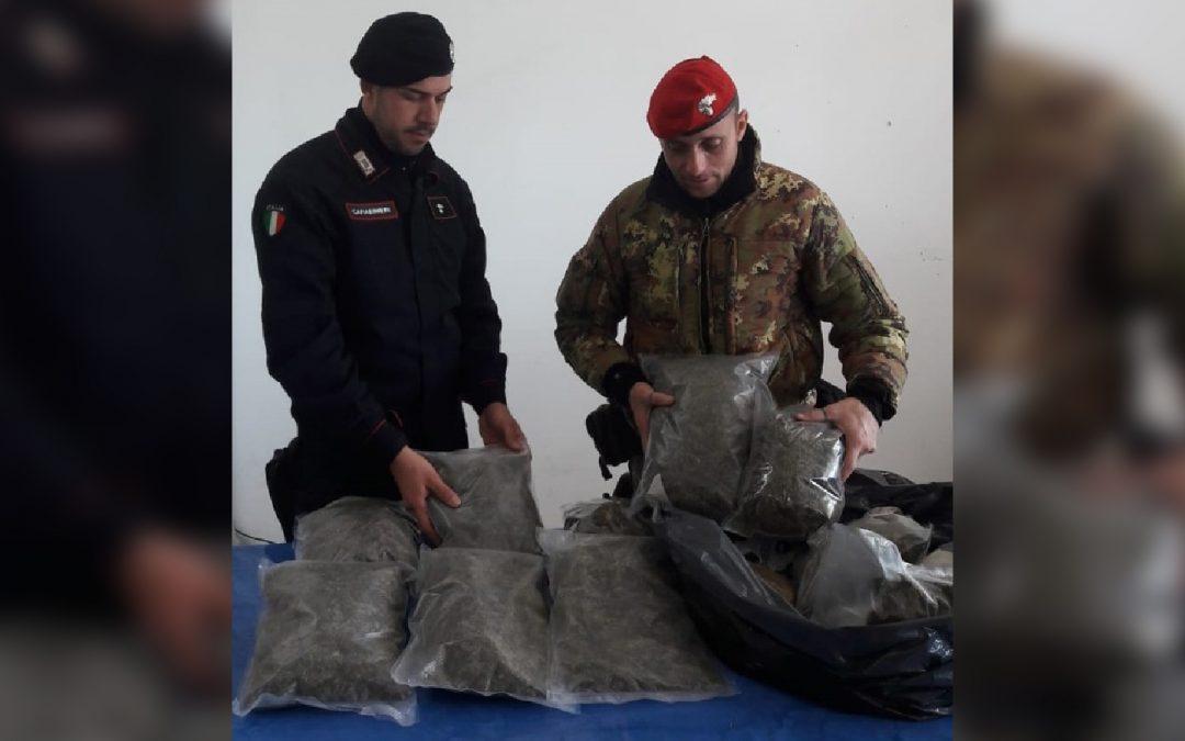 Siderno, sequestrata marijuana per 50 mila euro  Due arresti con l'accusa di detenzione ai fini di spaccio