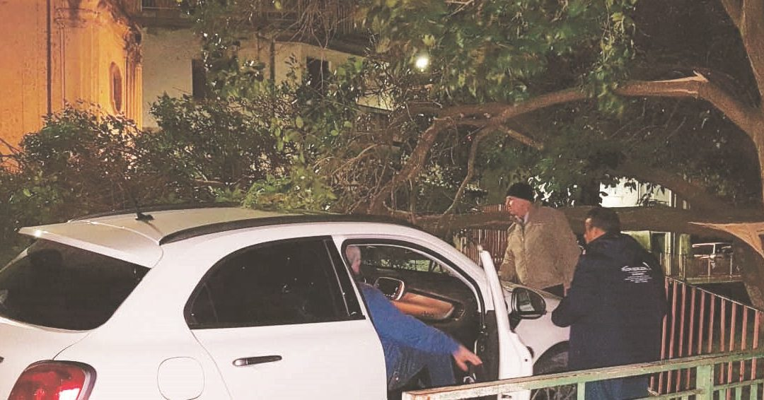 FOTO – Burrasca di vento in Calabria: danni nel Reggino e nel Catanzarese