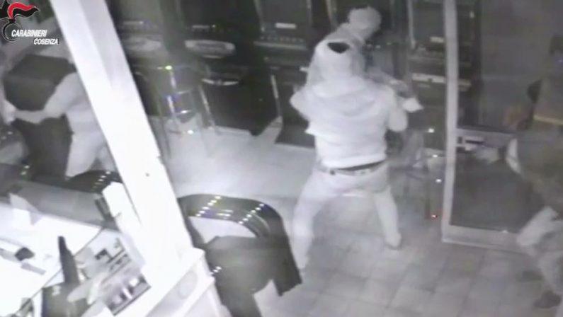 """Furti con """"spaccata"""", scoperta banda nel Cosentino  Diversi i """"colpi"""" a segno in varie città, nove arresti"""