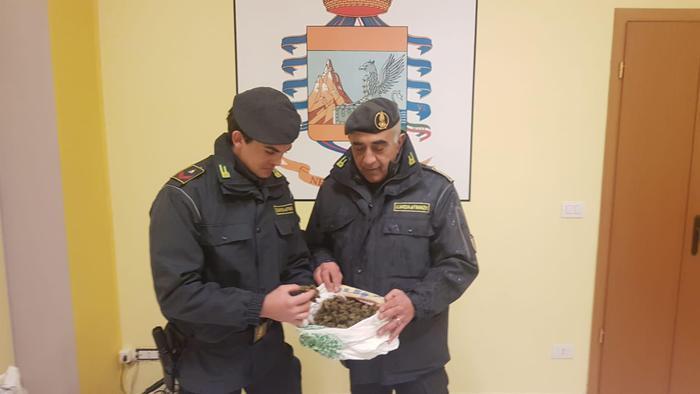 Reggio Calabria, scoperta una centrale dello spaccioOltre 5 chilogrammi di marijuana sequestrata, due arresti