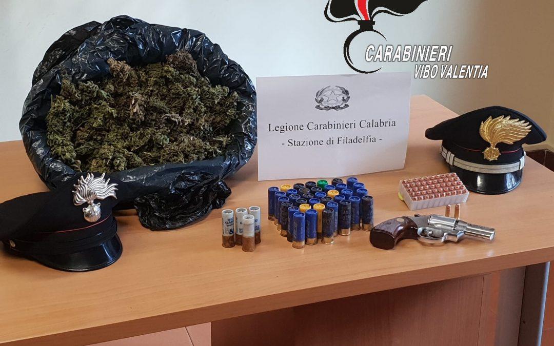 Armi e droga nascosti in un casolare nel vibonese  I carabinieri indagano per identificare il proprietario