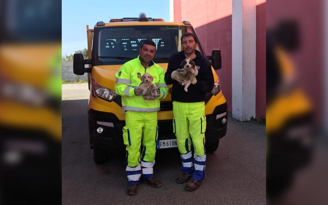 I due operai che hanno portato in salvo i due cagnolini