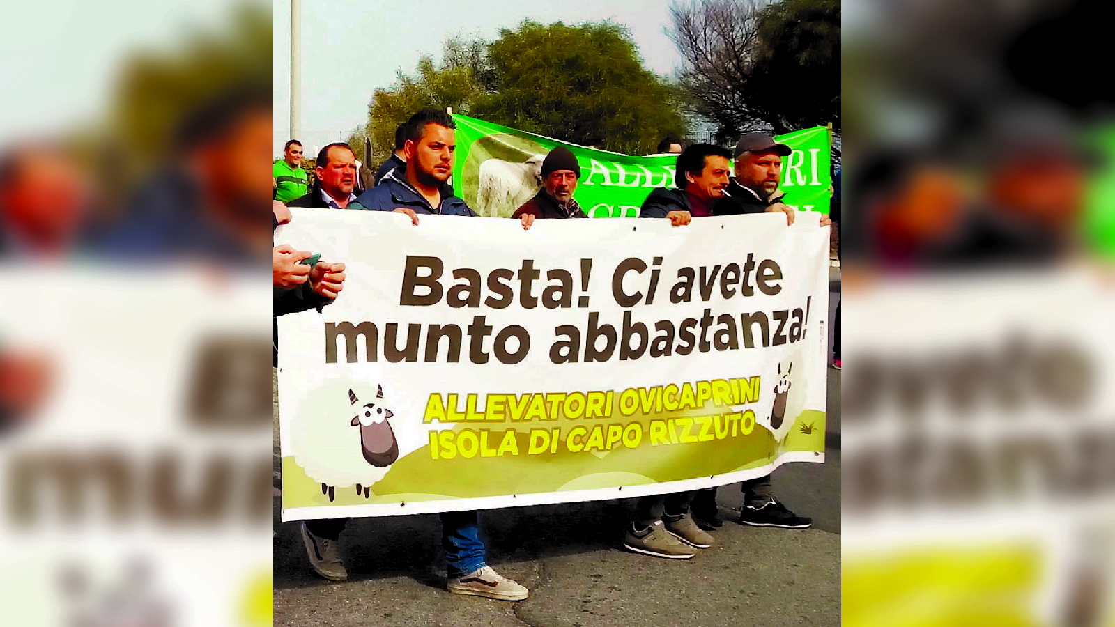 La rivolta del latte: «I costi di trasporto ci penalizzano»Fieno e mangimi importati: la doppia beffa calabrese