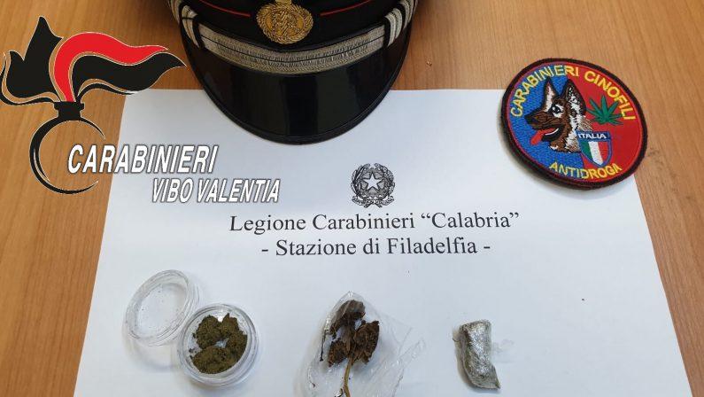 Controlli antidroga nelle scuole del ViboneseSequestrate alcune dosi di marijuana in un istituto