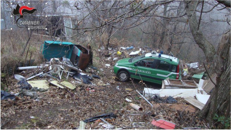 Ambiente, rifiuti speciali ammassati in un castagnetoUna denuncia e area sequestrata nel Catanzarese