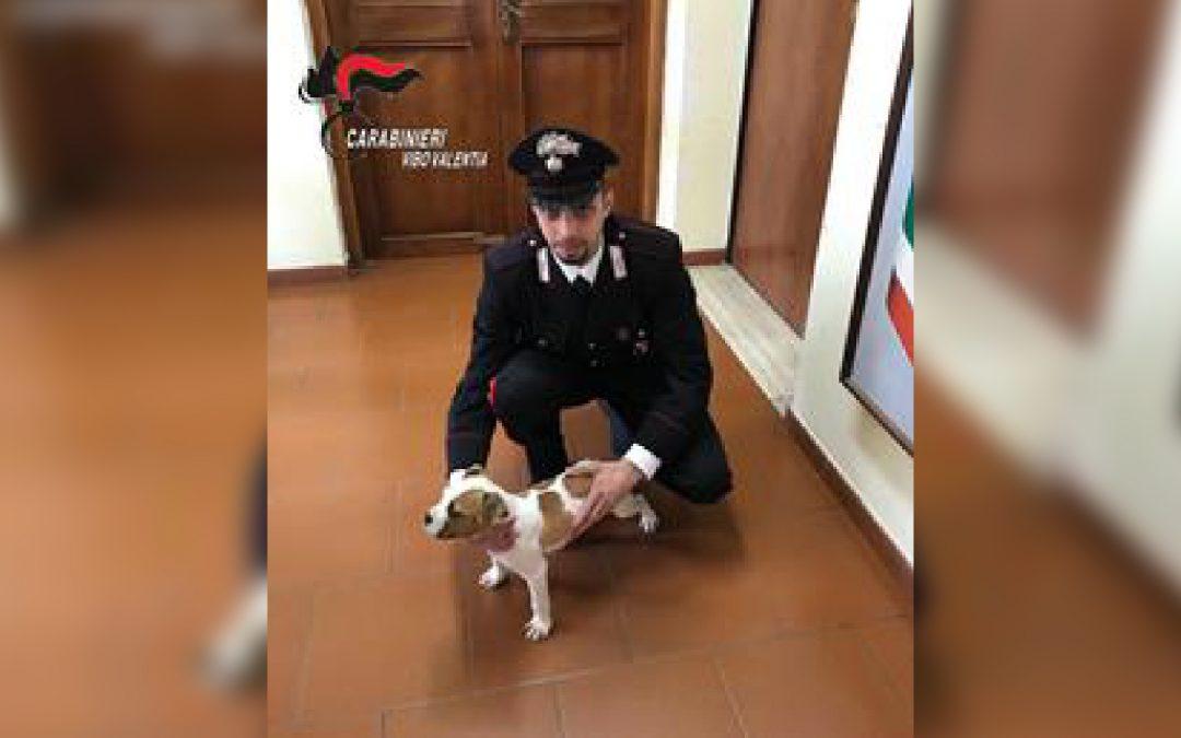 Il piccolo Birillo portato in salvo dai carabinieri