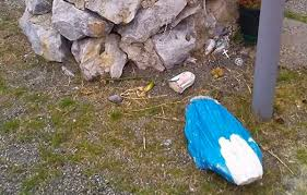 Statua della Madonna distrutta nel CatanzareseIndagini per risalire ai responsabili dell'atto vandalico