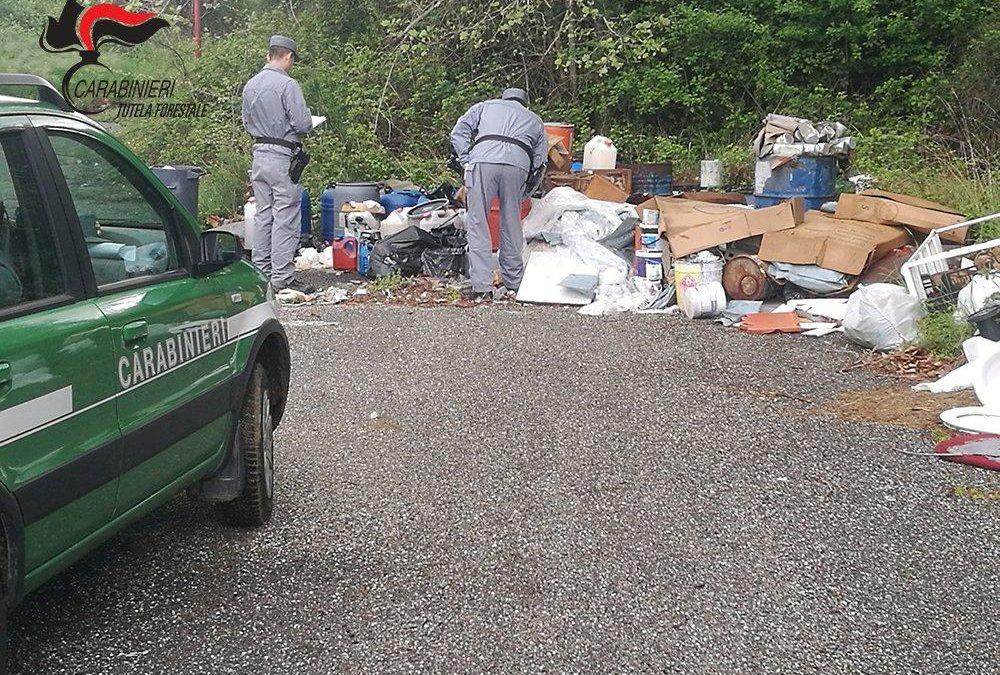 Ambiente, alto il numero degli ecoreati in Calabria  Allarme Legambiente sul ciclo illegale dei rifiuti