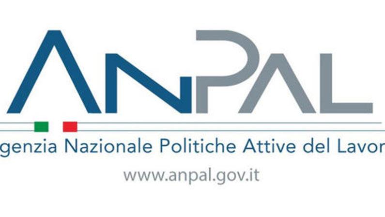 Reddito di Cittadinanza, l'Anpal diffonde i dati sui navigatorA Cosenza per 60 posti giunte già oltre 1500 domande