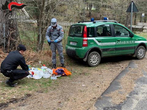 carabinieri forestale cotronei