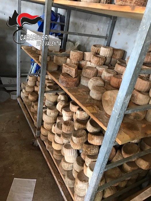 Mille forme di formaggio deteriorate, sequestrateOperazione dei carabinieri in un caseificio vibonese