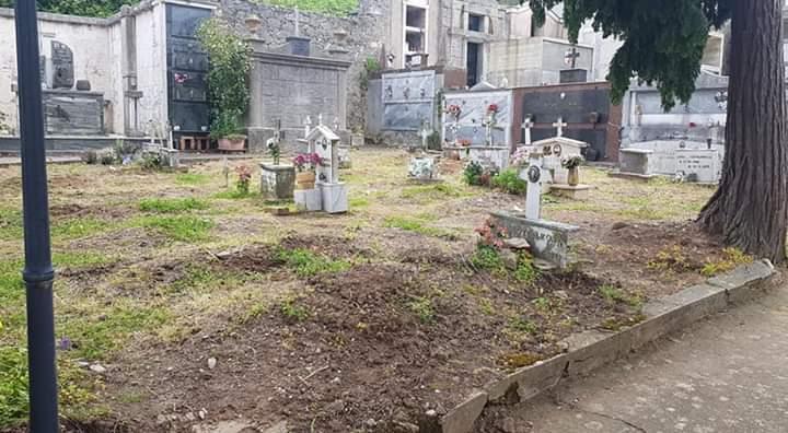 Sorianello, i cinghiali devastano il cimitero comunale  Incursione notturna con danni a cappelle e tombe