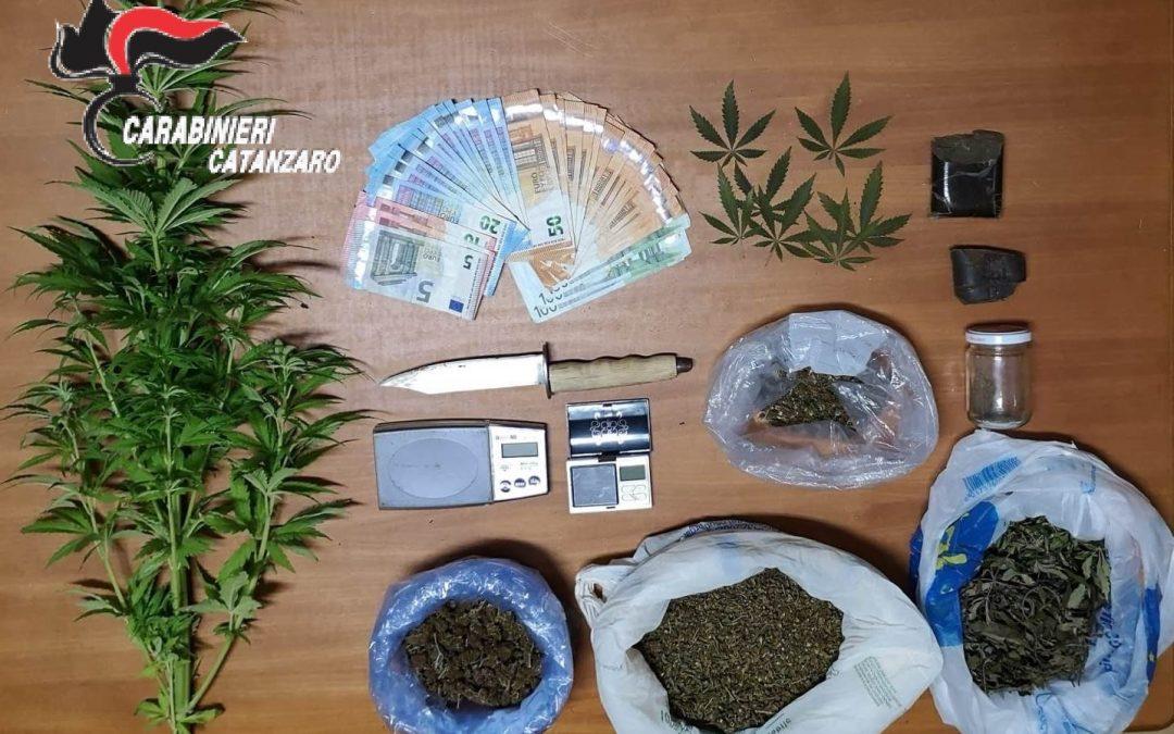 Diverse dosi di droga nell'abitazione del Catanzarese Arrestato napoletano con 600 grammi di marijuana
