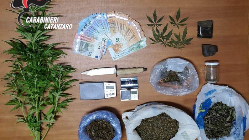 Diverse dosi di droga nell'abitazione del CatanzareseArrestato napoletano con 600 grammi di marijuana