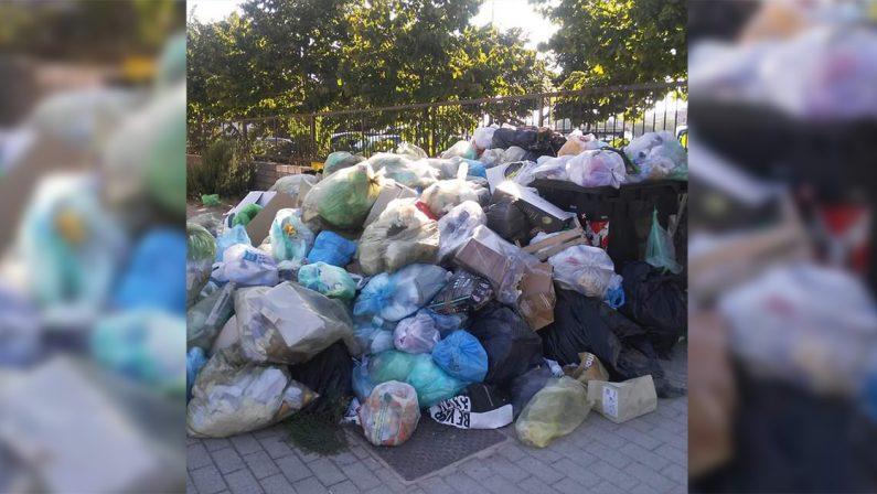 L'area davanti l'Azienda sanitaria di Vibo colma di spazzatura, allarme igienico