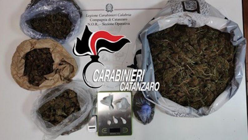 Nascondeva 2 chili di marijuana in casa, arrestato un 40enne nel Catanzarese
