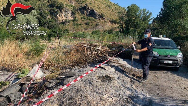 Roghi di rifiuti e taglio abusivo di alberi, due denunce nel Cosentino