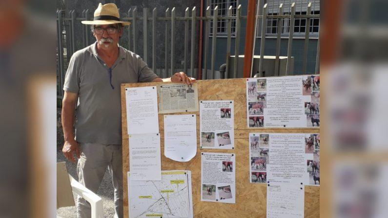 La protesta dell'agricoltore a cui rubarono 9 cavalli«Istituzioni assenti, nessuno si è fatto sentire»
