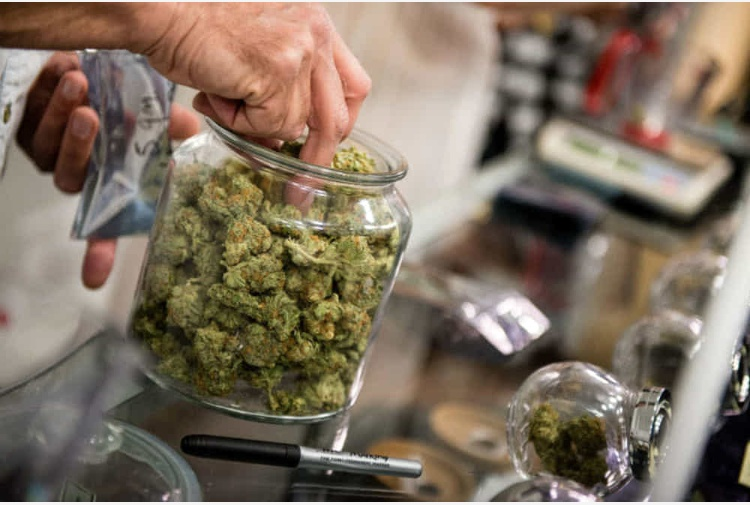 Controlli negli esercizi di cannabis light del RegginoPrelievi dei prodotti in vendita e verifiche
