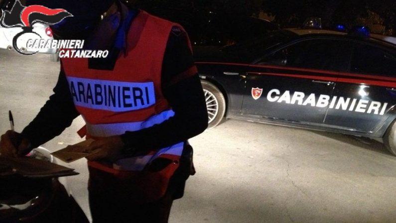 Armi e munizioni nascoste nell'ovile, arrestato un 73enne nel Catanzarese