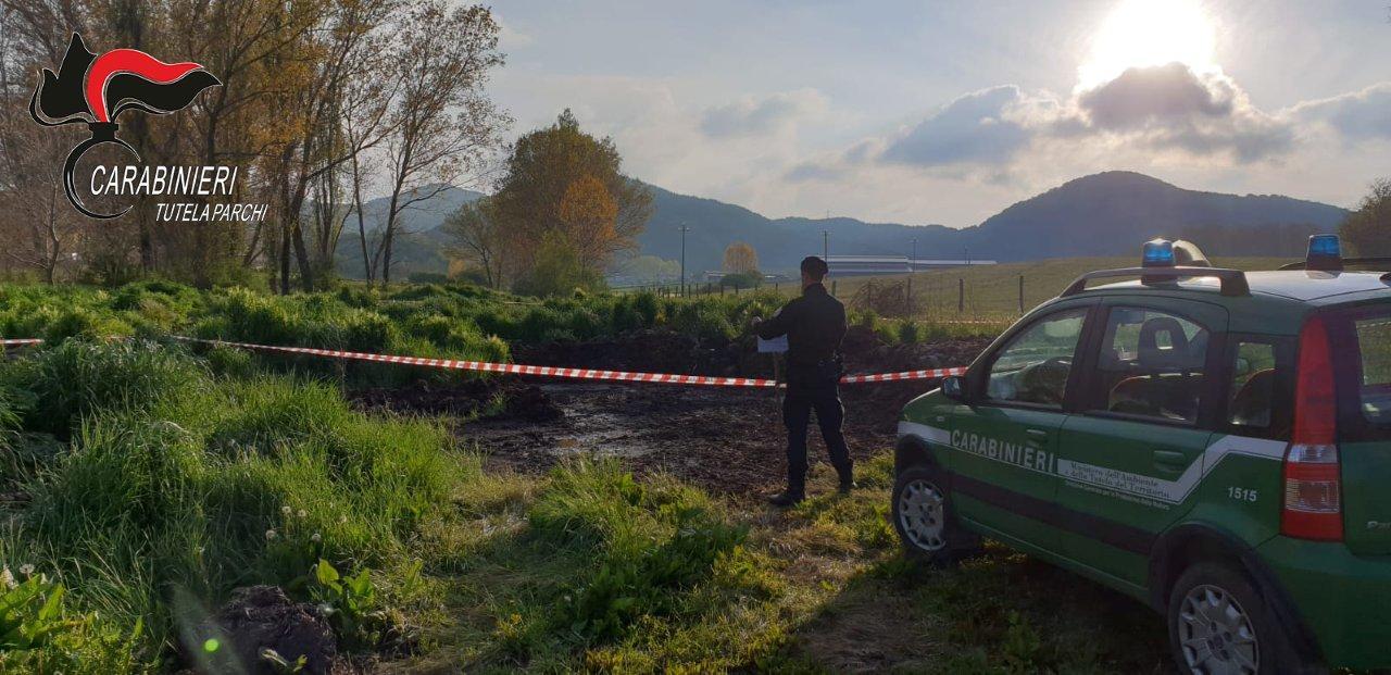 Rifiuti agricoli abbandonati su un terrenoDenunciato un imprenditore nel Cosentino