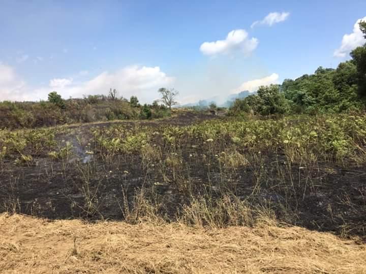 Nuovo incendio ad Acquaro devasta la campagnaAncora ritardi per gli interventi di soccorso