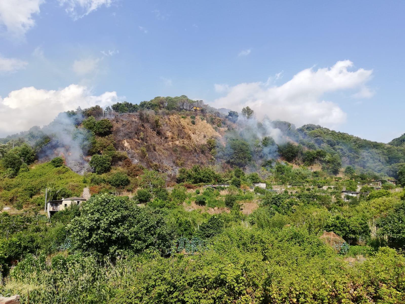 Vasto incendio divampa alle porte di Acquaro nel Vibonese  Sul posto i vigili del fuoco intervenuti dopo alcune ore