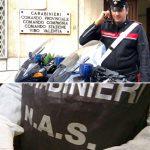 carabinieri vibo e nas.jpg