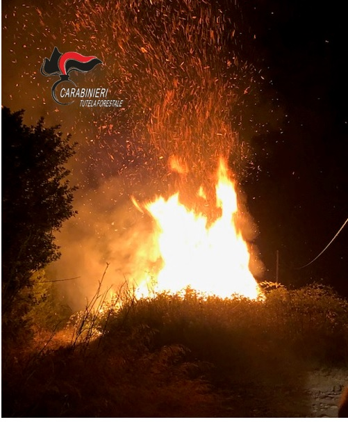 Sorpreso mentre appicca un incendio in campagnaArrestato un uomo nel Catanzarese, domato il rogo