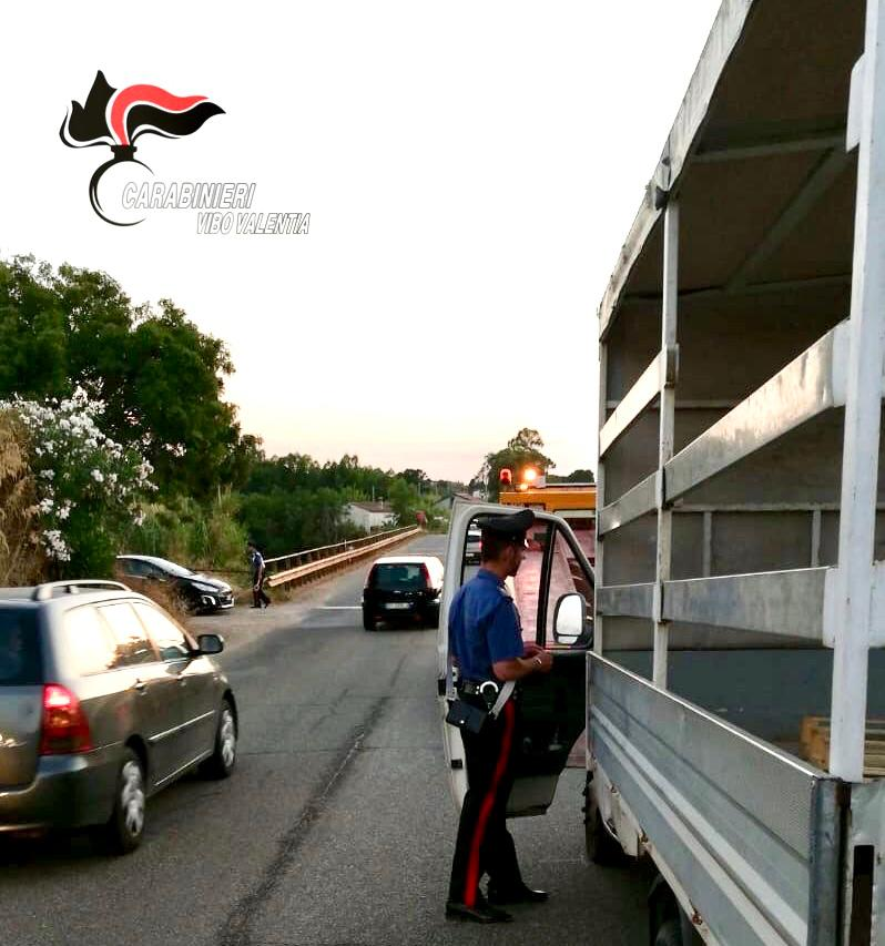 Ciclista investito da un furgone nel ViboneseL'uomo è morto sul colpo, indagine sulla dinamica