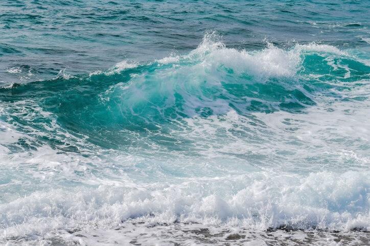 Microalghe potenzialmente tossiche nei mari di Calabria: lo studio dell'Arpacal sul fenomeno