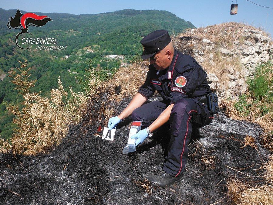 Non controlla le torce per la processione e scoppia un incendio  Denunciato 51enne, in fumo 10 ettari di macchia mediterranea