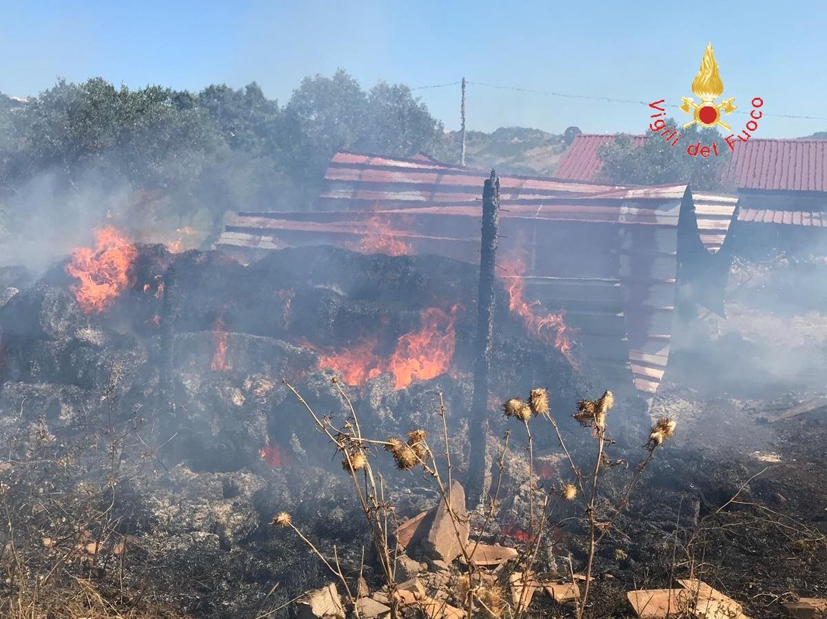 Incendio distrugge una stalla nel Catanzarese  Vigili salvano animali e abitazioni vicine al rogo