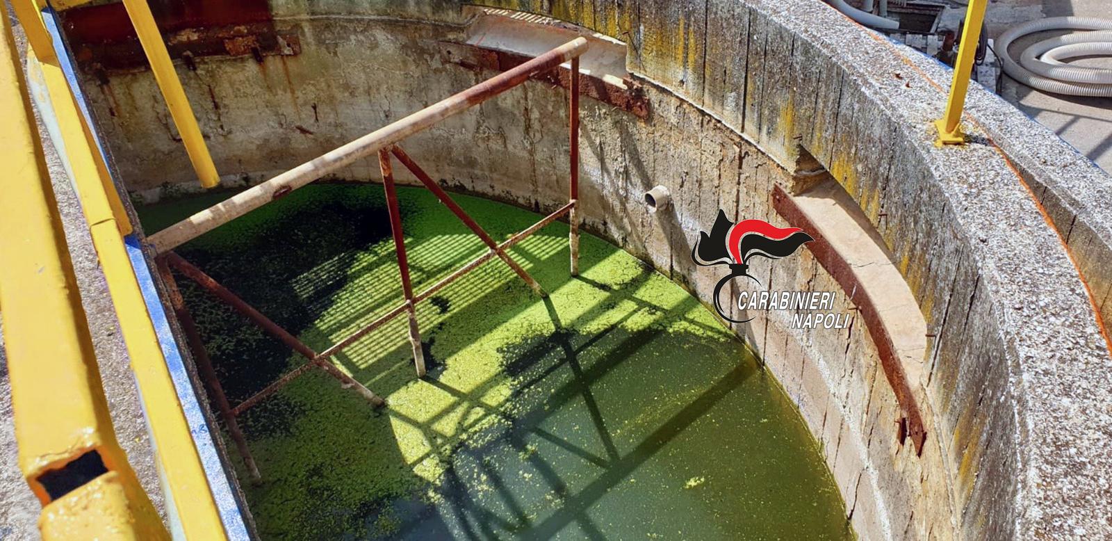 Caivano: carabinieri sequestrano preventivamente azienda che lavora carcasse e residui animali