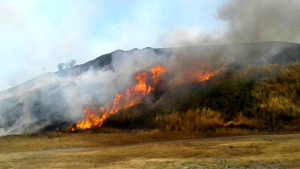 A fuoco sterpaglie nel Parco Nazionale del Vesuvio