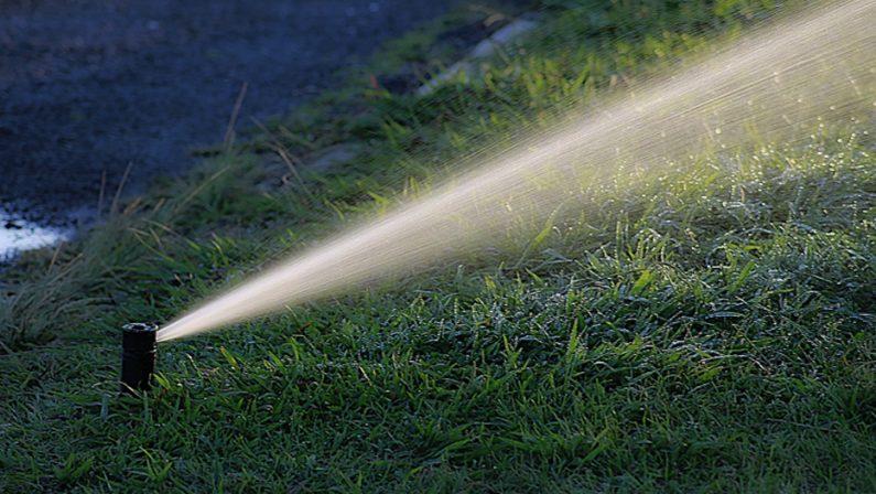 Vandalizzato impianto di irrigazione su lungomare Pozzuoli