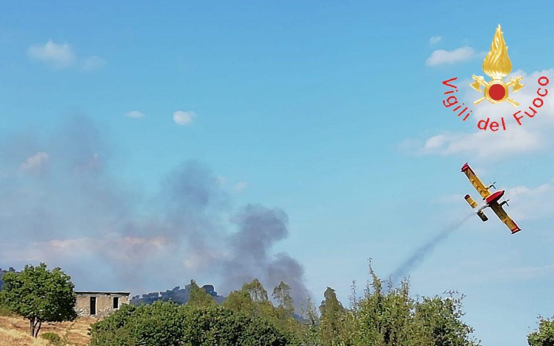 Incendio sulla costa ionica del Catanzarese  Allarme anche tra i bagnanti, lambite abitazioni