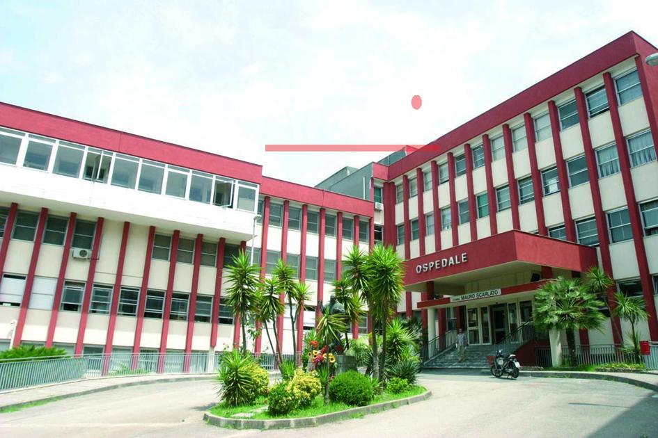 Salma ricoperta di formiche nell'ospedale di Scafati: aperta inchiesta