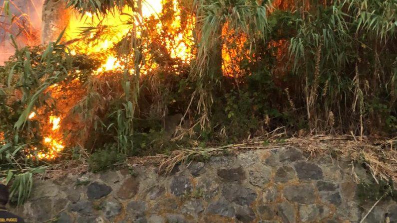 Vigilesse salvano una anziana coppia nel ViboneseI coniugi sorpresi in campagna da un vasto incendio