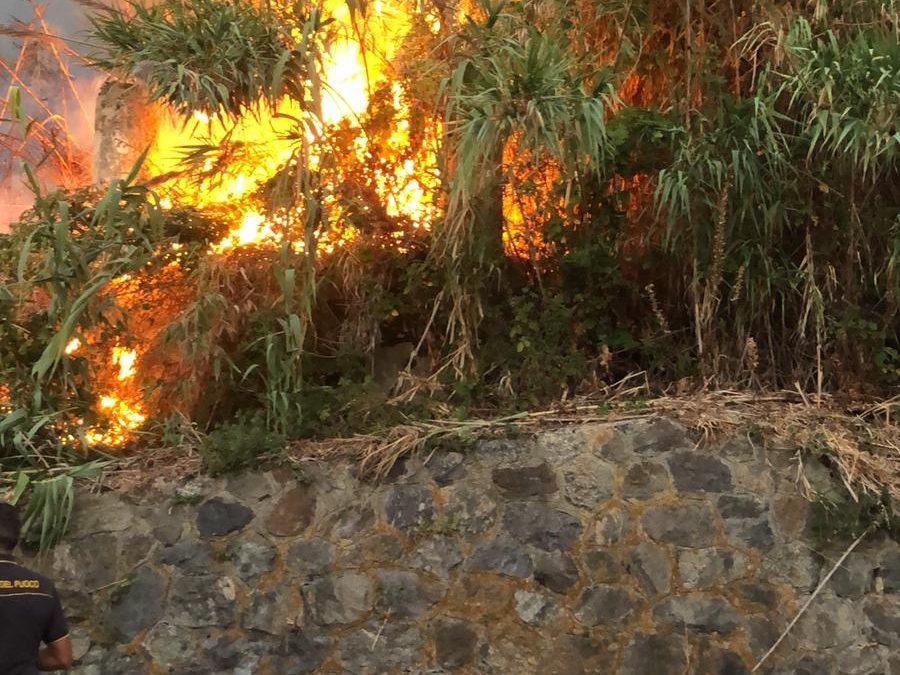 Vigilesse salvano una anziana coppia nel Vibonese  I coniugi sorpresi in campagna da un vasto incendio