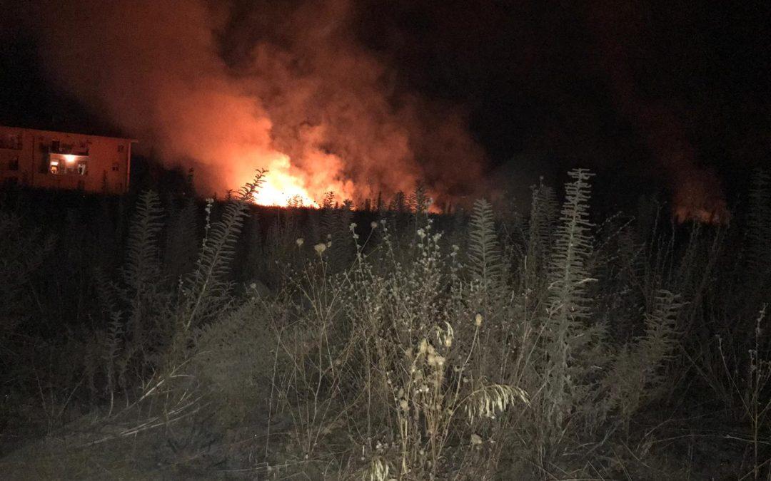 Incendio nell'area archeologica di Vibo Valentia  Rovine a rischio, mancano interventi di bonifica