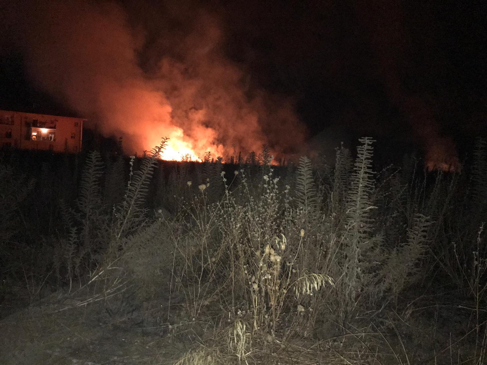 Incendio nell'area archeologica di Vibo ValentiaRovine a rischio, mancano interventi di bonifica