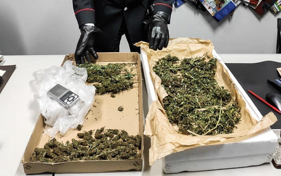 Napoli, essiccava marijuana nel garage, arrestato 18enne