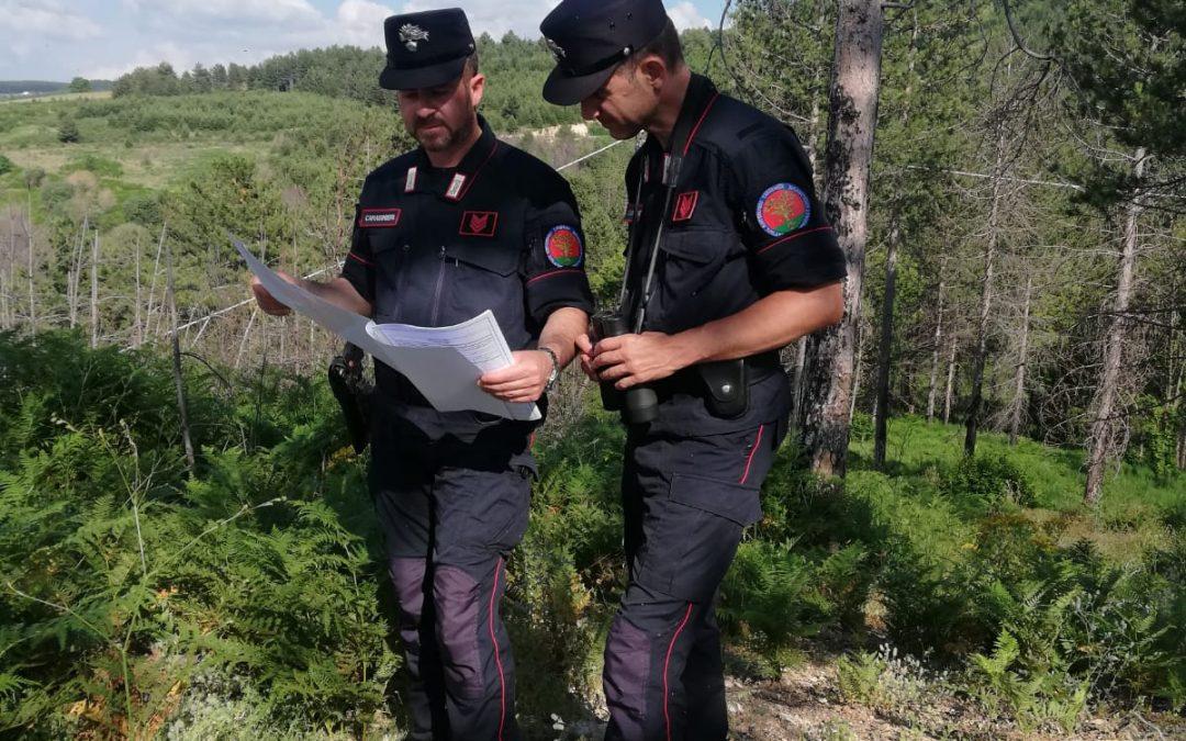 Truffa per erogazione fondi Psr in agricoltura, tre denunce nel Cosentino