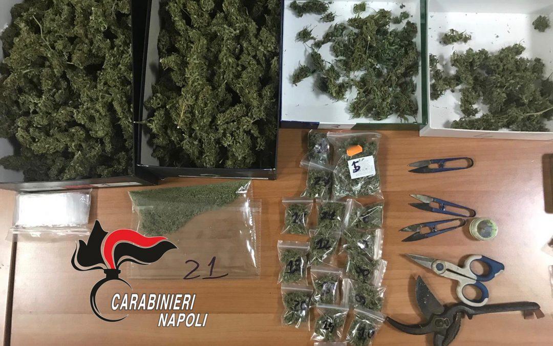 Otto chili di marijuana in casa e piante di cannabis in giardino, due arresti