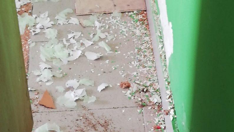 Topi tra i giocattoli dei bambini dell'asilo nel Vibonese, scatta la protesta dei genitori