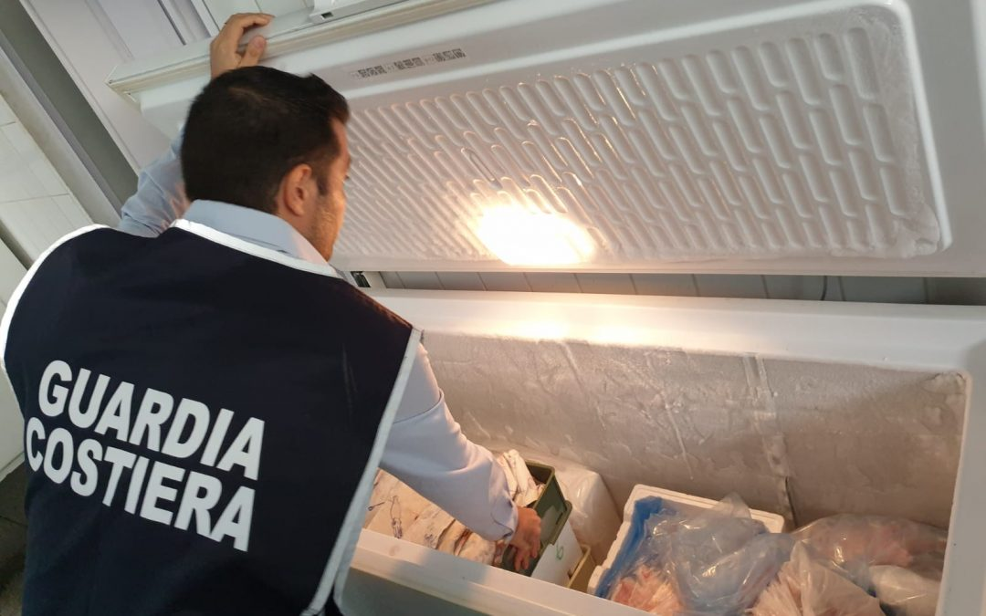 Sicurezza alimentare, Guardia costiera sequestra 35 chili di pesce in un negozio di Lamezia