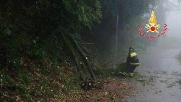 Maltempo in Calabria, forti precipitazioni sul versante ionico, alberi caduti e allagamenti